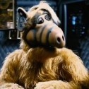 What happened to the actors of the series Alf the extraterrestrial