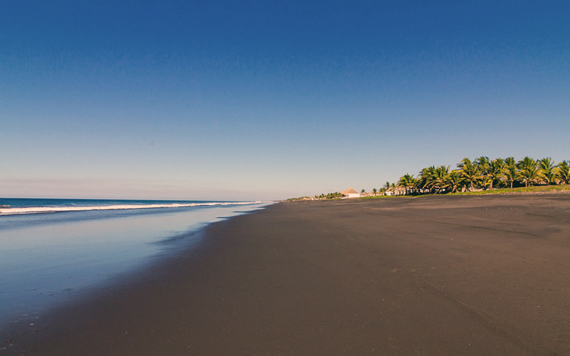 The beach of Monterrico